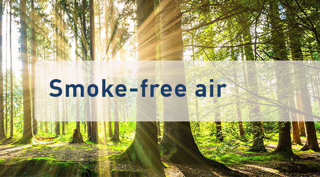 Smoke-free air with the IRF-series | ULMATEC GmbH